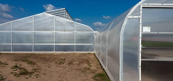cover-greenhouse پوشش های گلخانه