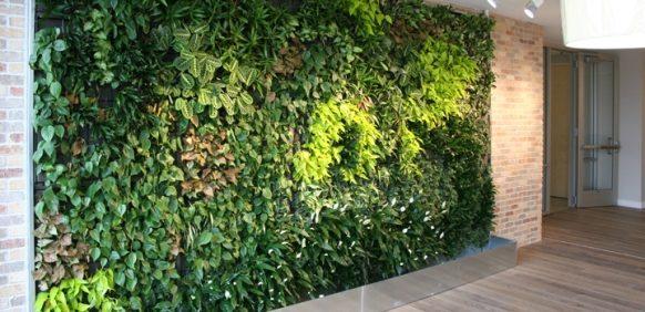 دستورالعمل دیوار سبز در روف گاردن