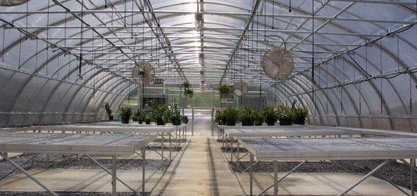 انواع پوشش در گلخانه