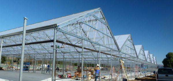 طرح توجیهی احداث گلخانه مشاور گلخانه